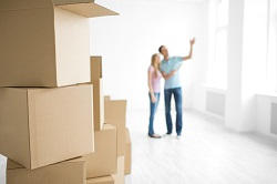 Trustworthy Movers and Packers in Bayswater